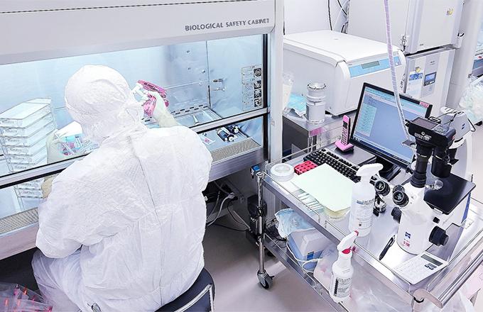 間葉系幹細胞の培養施設